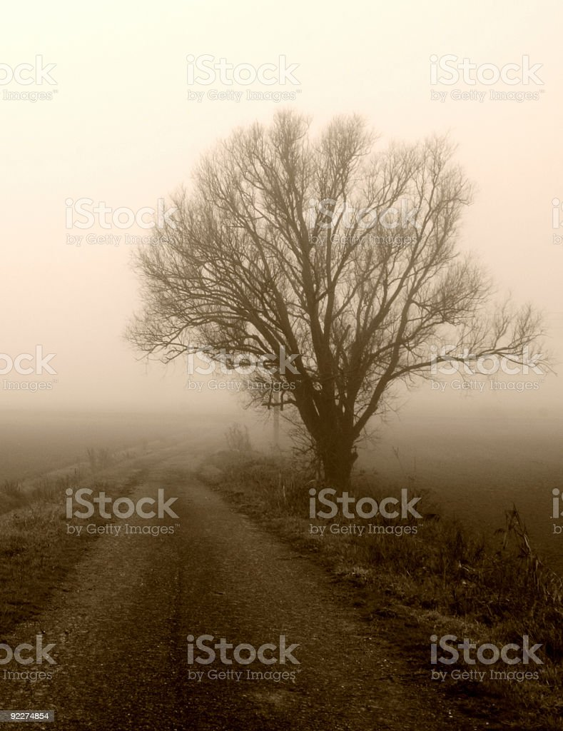 Country Road in the Fog Sepia Toned royalty-free stock photo