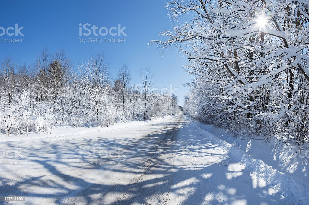 Country road in the heart of winter royalty-free stock photo