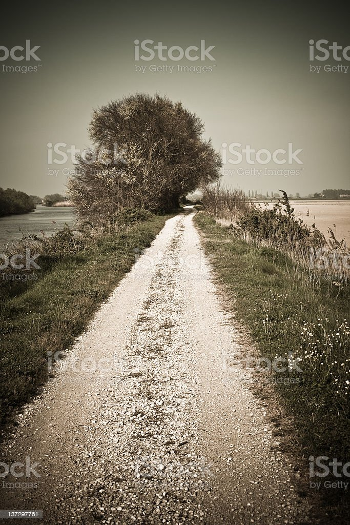 Country road in Tuscany royalty-free stock photo