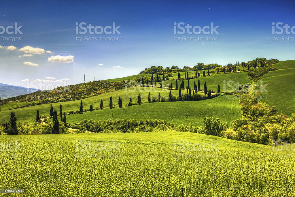 Country Road in Tuscany, Val d'Orcia royalty-free stock photo