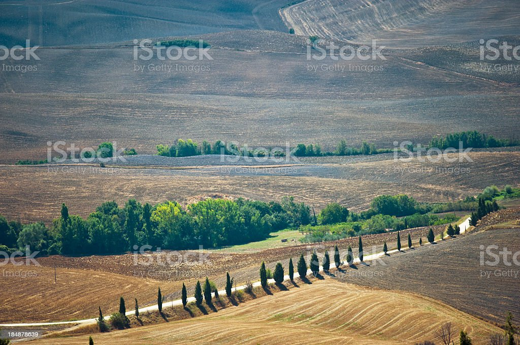 Country Road In Val D'Orcia, Tuscany royalty-free stock photo
