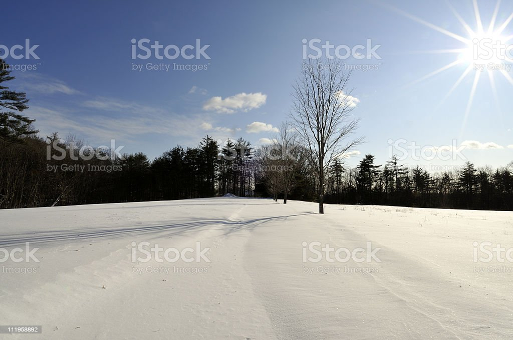 Country Road in Winter (Unplowed) stock photo