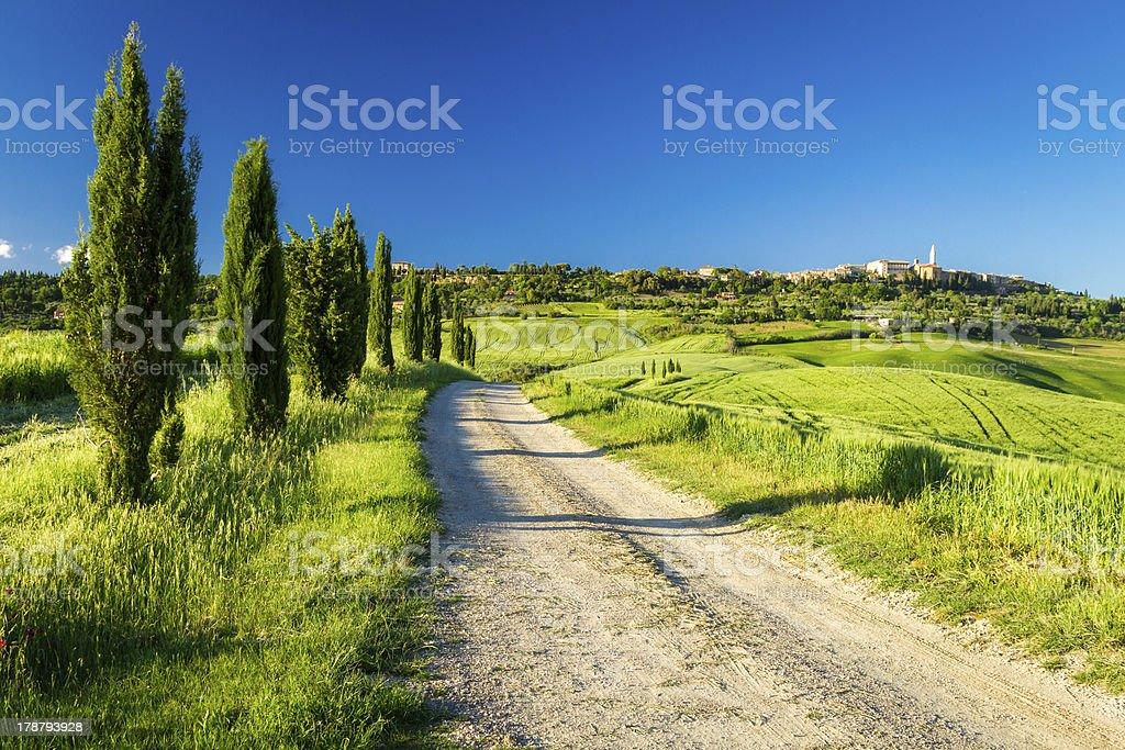 Country road leading to Pienza, Tuscany royalty-free stock photo