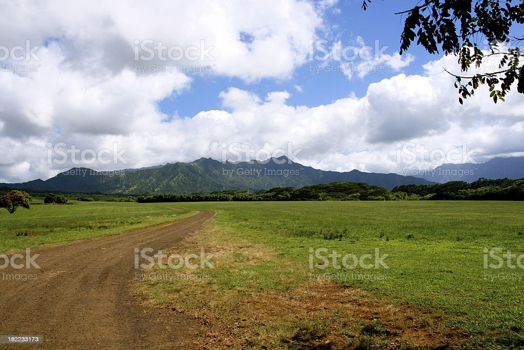 Country road near Princeville, Kauai under cloudy sky royalty-free stock photo