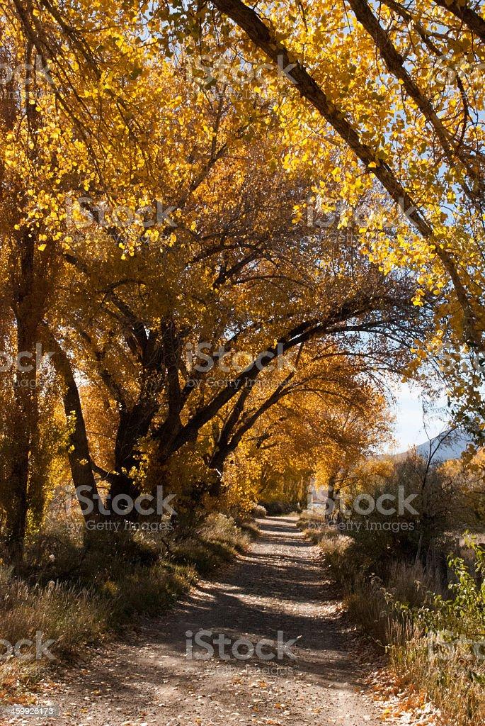 Country Road near Towaoc and Cortez Colorado stock photo