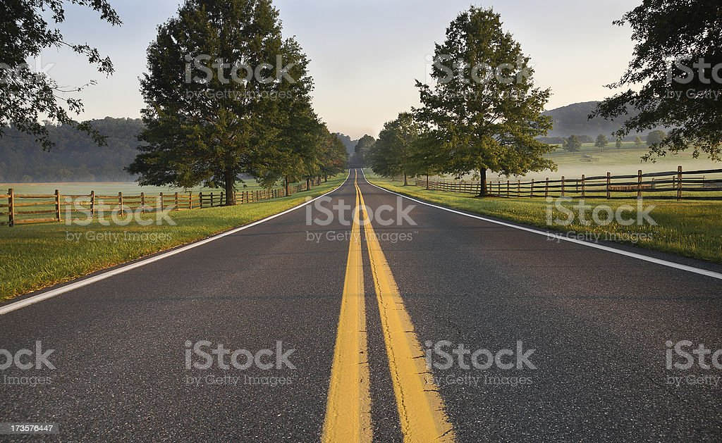 Country Road on a Summer Morning royalty-free stock photo