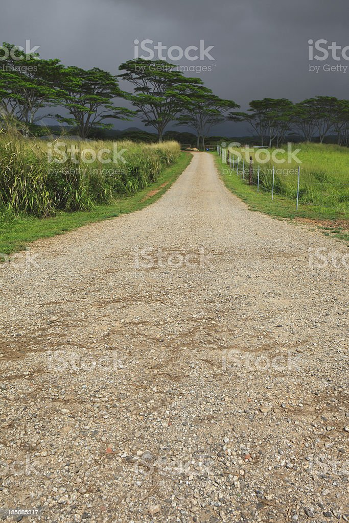 Country Road on a Tropical Island stock photo