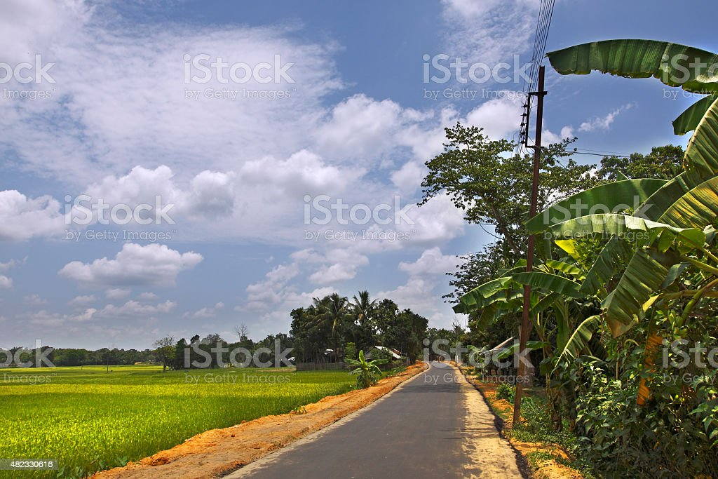 Country Road passing thru farms stock photo