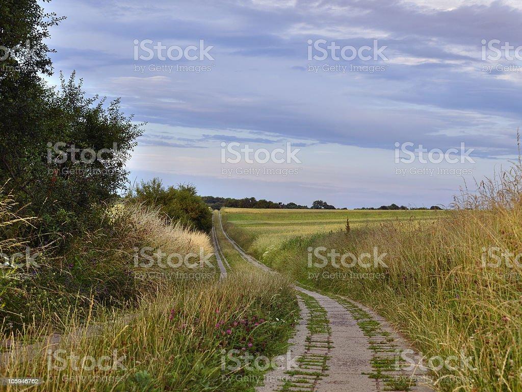 Carretera de campo foto de stock libre de derechos