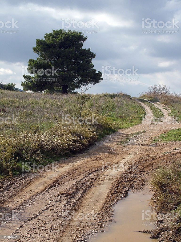 Country Road (vertical) royalty-free stock photo