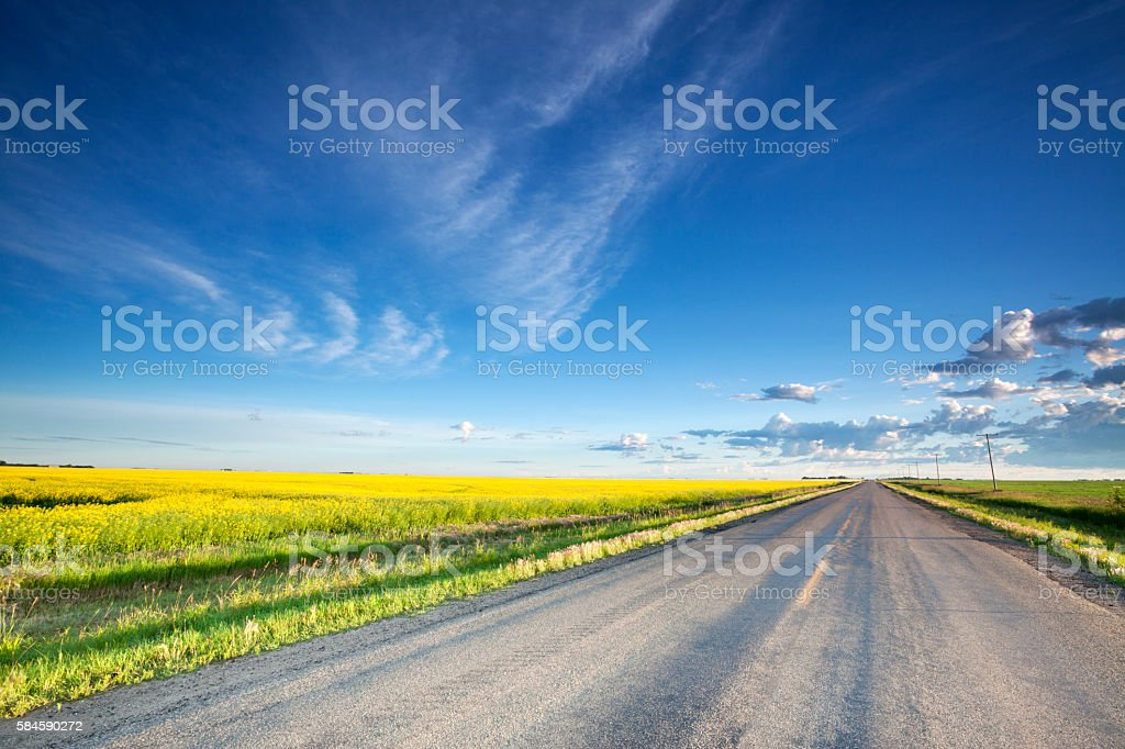 Country Road Saskatchewan stock photo