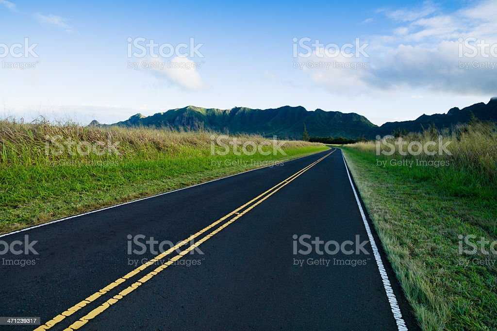 Country Road Summer Landscape royalty-free stock photo