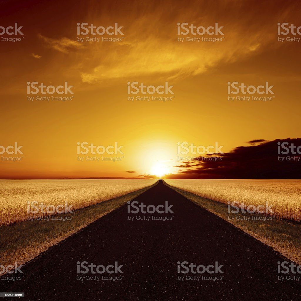 XXXL country road sunset royalty-free stock photo