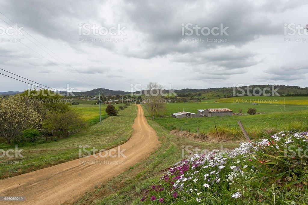 Country Road Tasmania stock photo