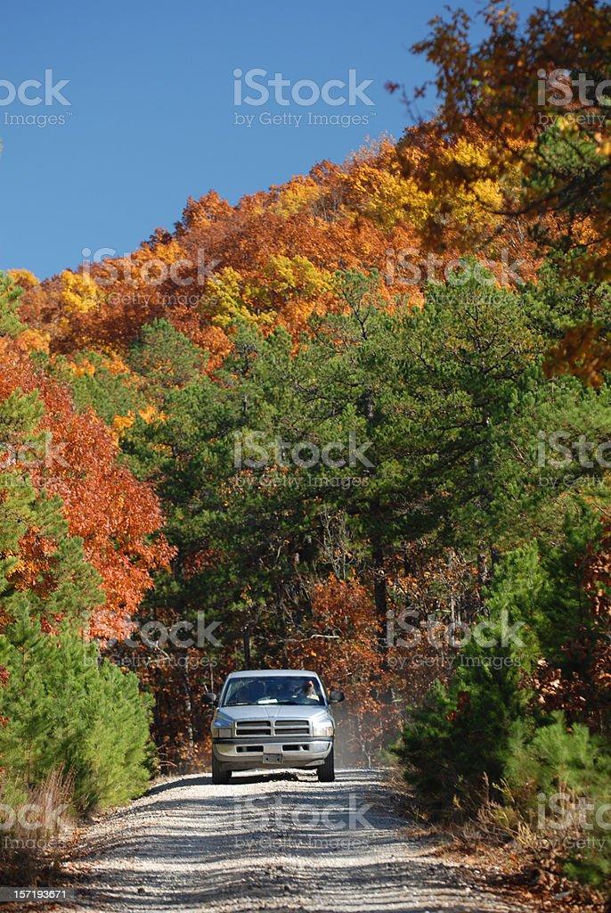 Country Road Through Autumn Paradise royalty-free stock photo