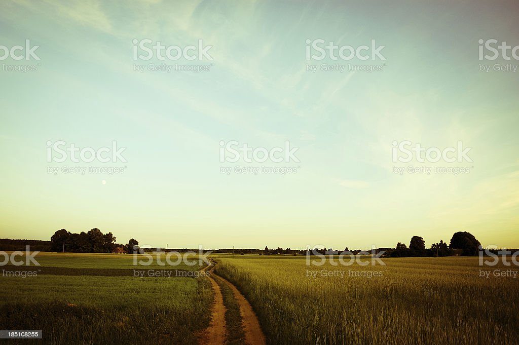 Country road through rural landscape stock photo