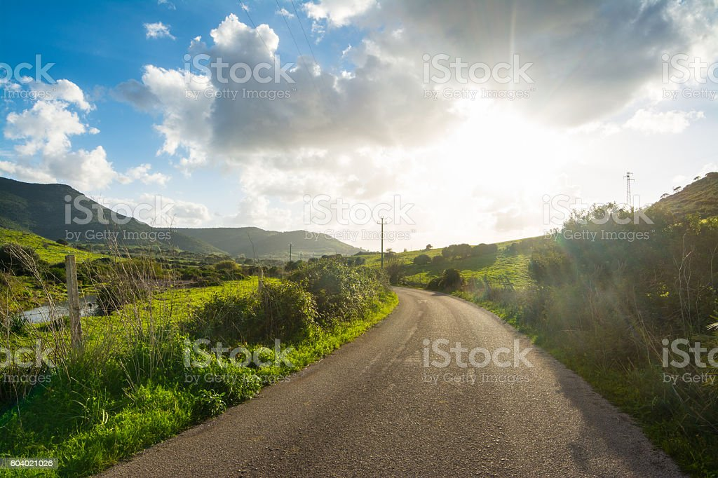 country road under a shining sun stock photo