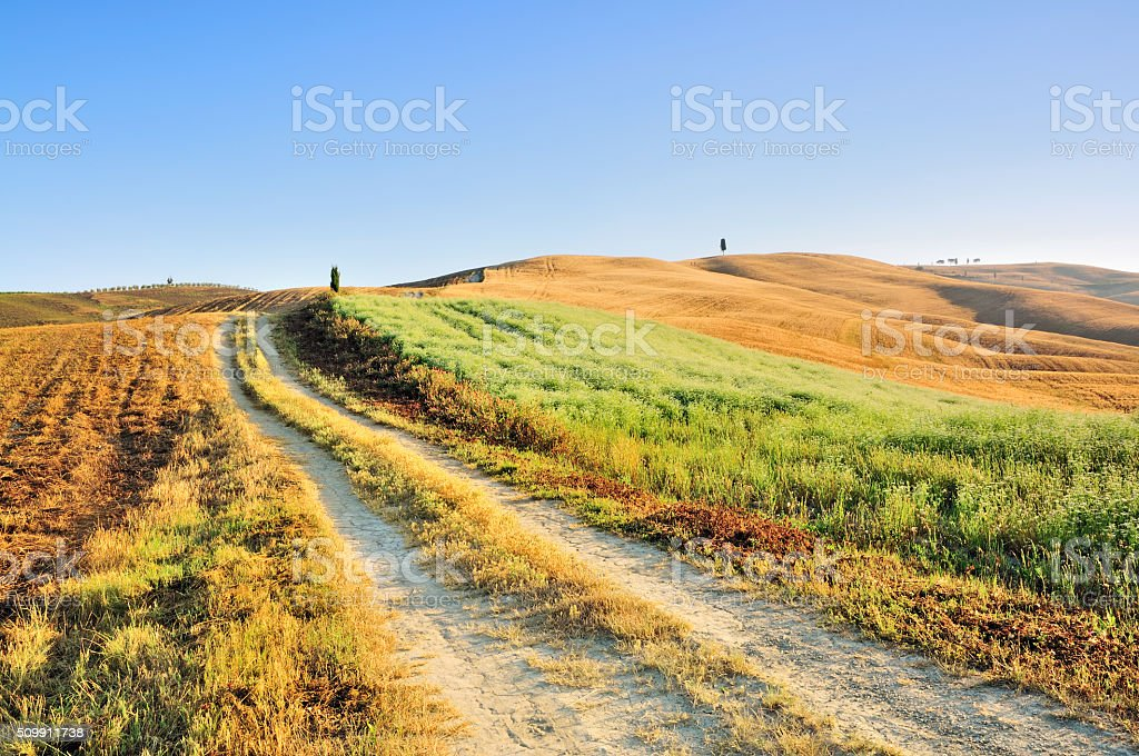Country Road winding through the Fields, Val d'Orcia, Tuscany, Italy stock photo