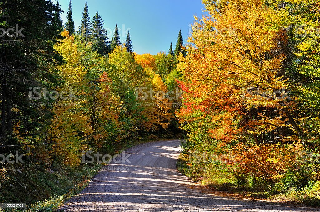 Country Road with Autumn Colors stock photo