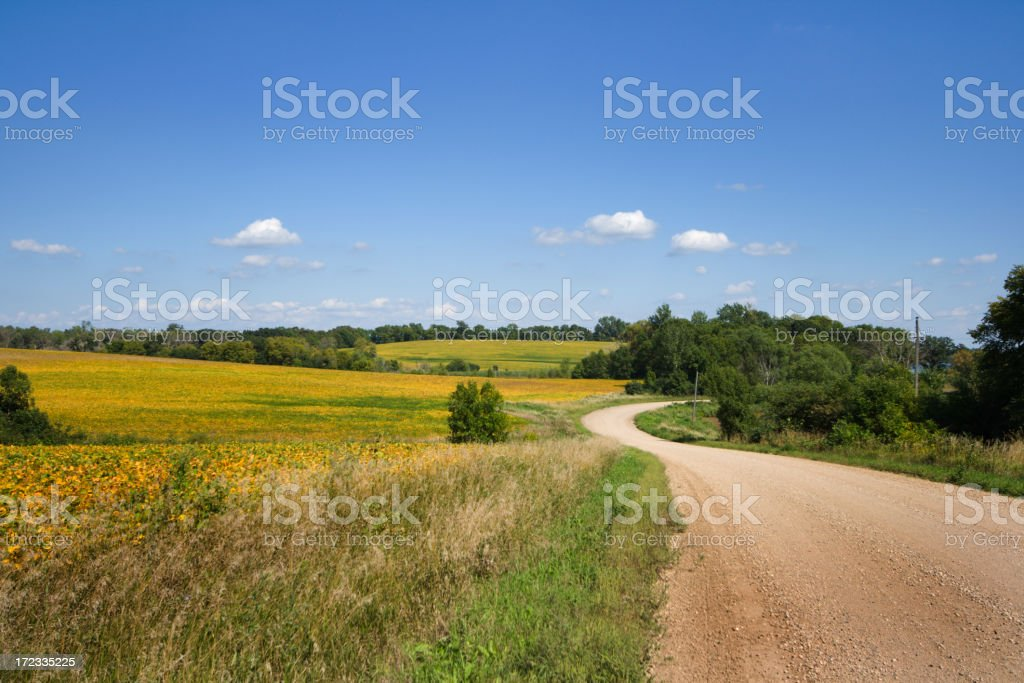 Country Road with Rural Farm Field Landscape, Minnesota, Midwest USA royalty-free stock photo