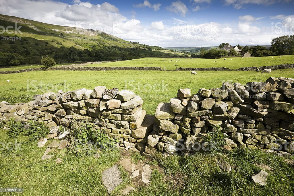 Country Scene in Swaledale Yorkshire stock photo
