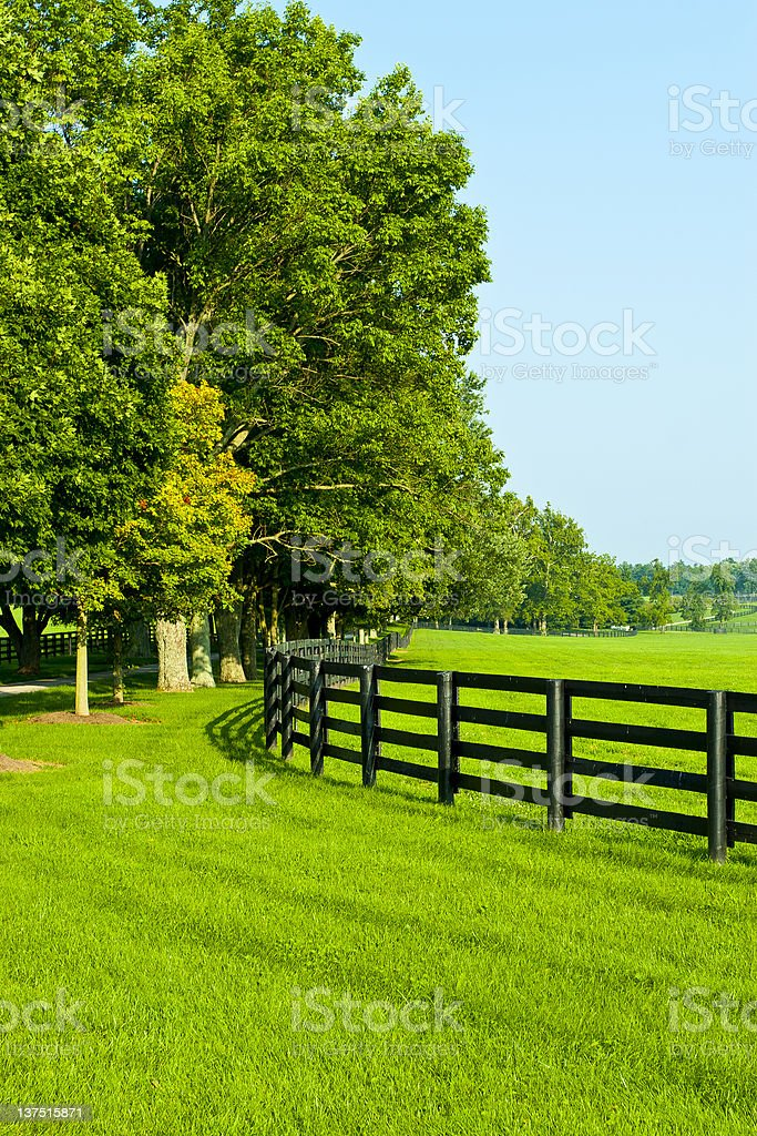 Country Scenery stock photo