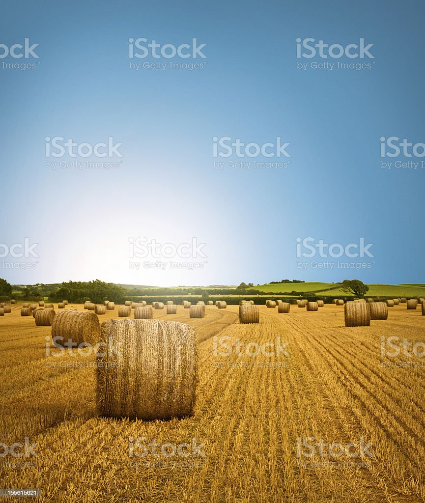 Country Side Hay Bale Scenery stock photo