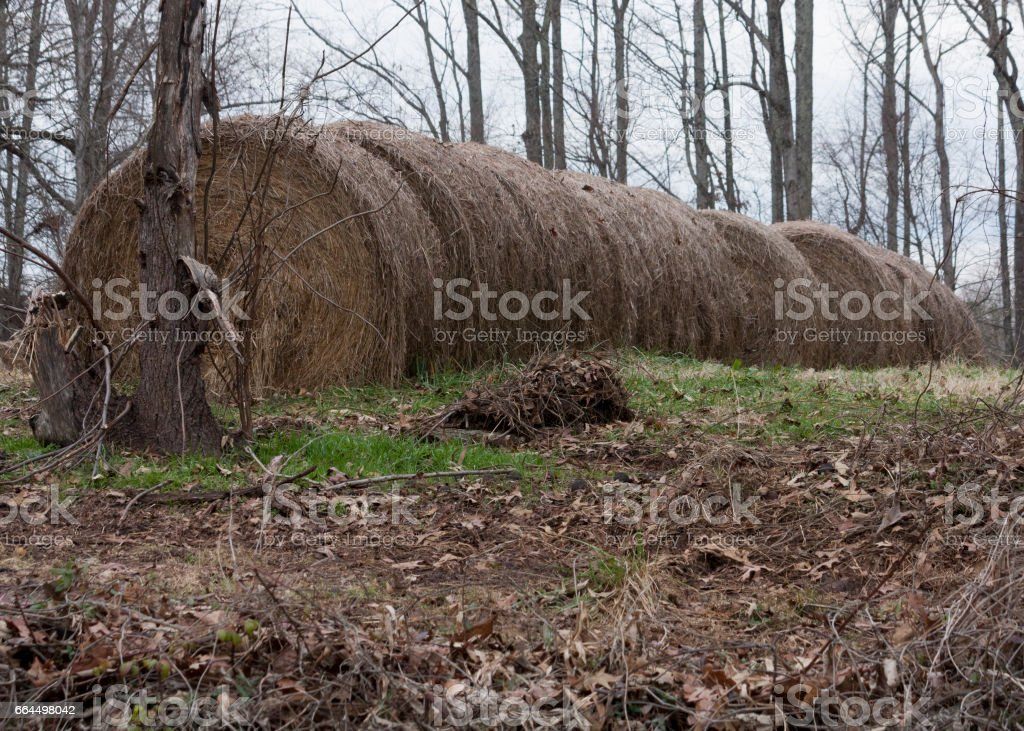 Country side Haystacks stock photo
