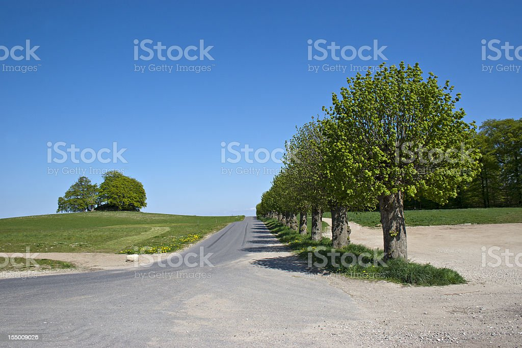 Country side road royalty-free stock photo