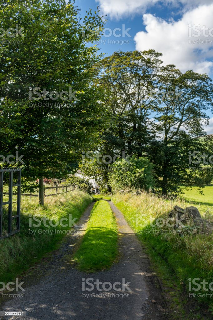 Country Side Road stock photo