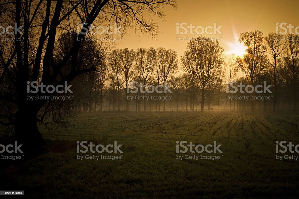 Country side sunrise stock photo