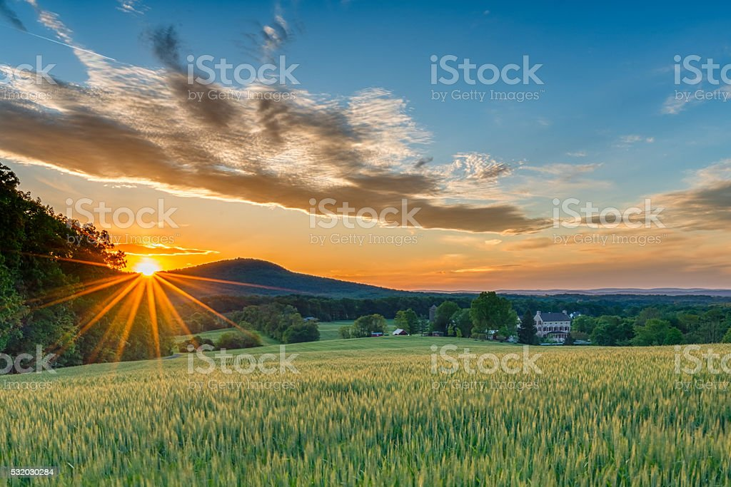 Country Sunset stock photo
