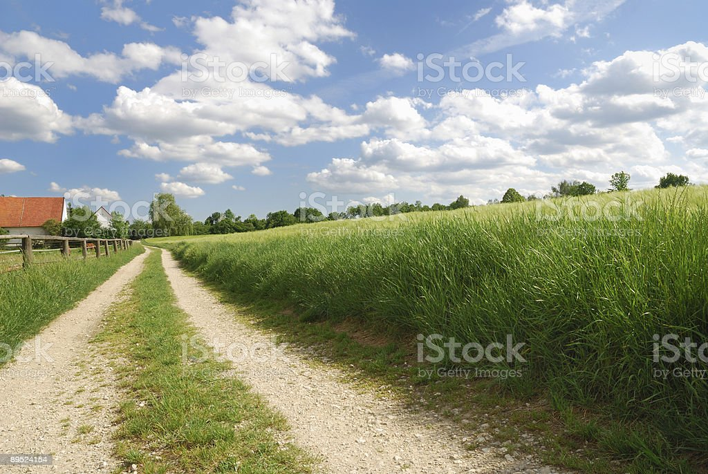Country track royalty-free stock photo