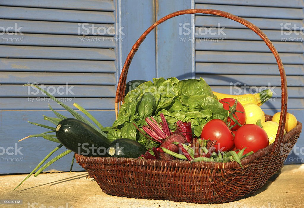 Country Vegetables royalty-free stock photo