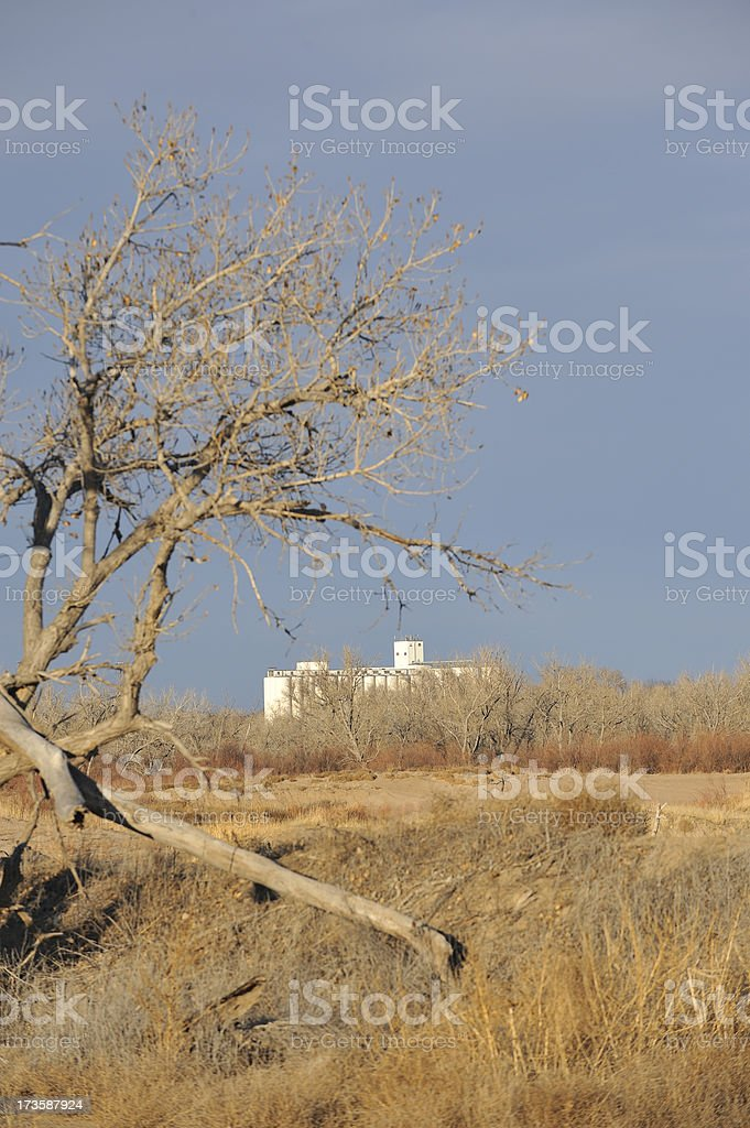 Country view in winter stock photo