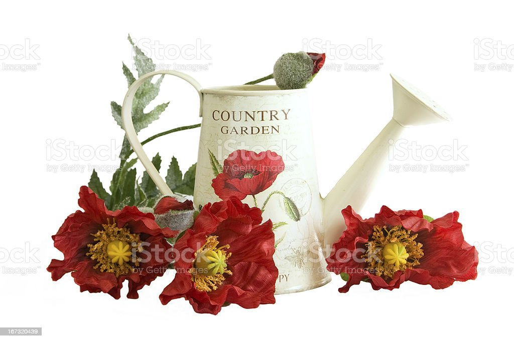 Country watering can with poppy flowers royalty-free stock photo
