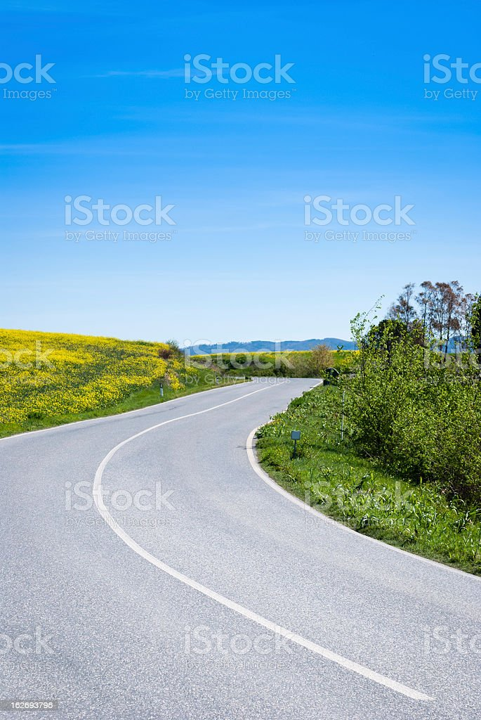 Countryroad in Tuscany, Italy royalty-free stock photo