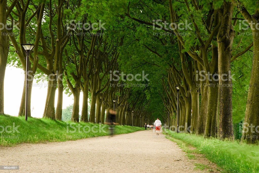 Countryroad with runners royalty-free stock photo