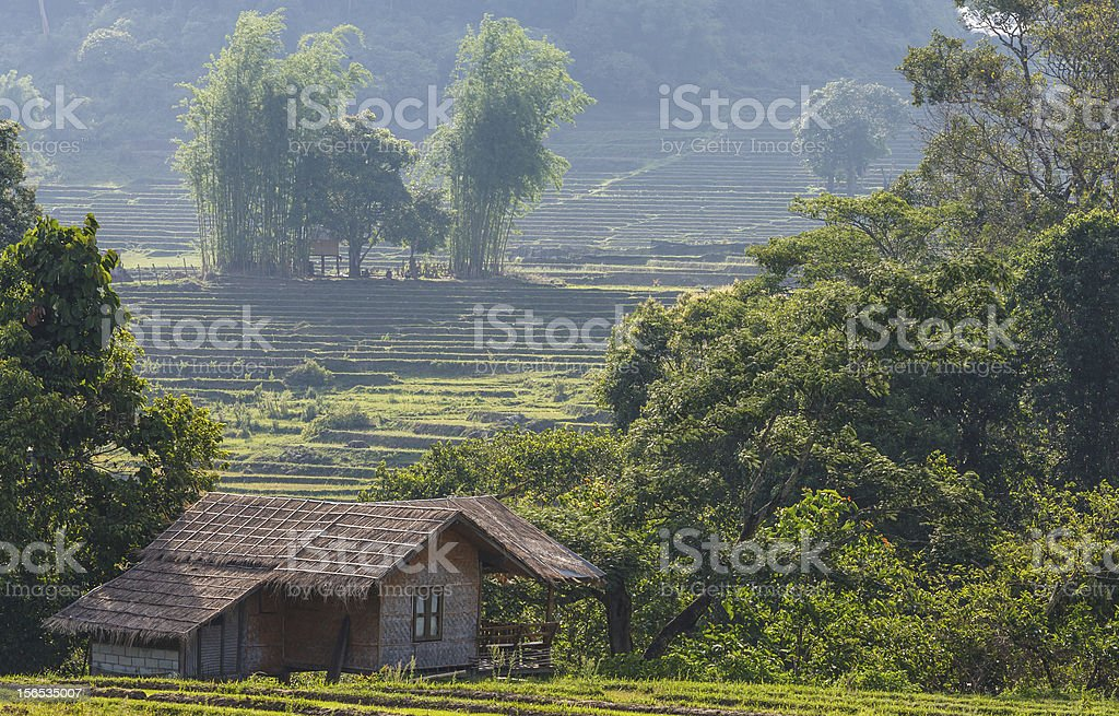 Countryside – Landscape in Thailand royalty-free stock photo