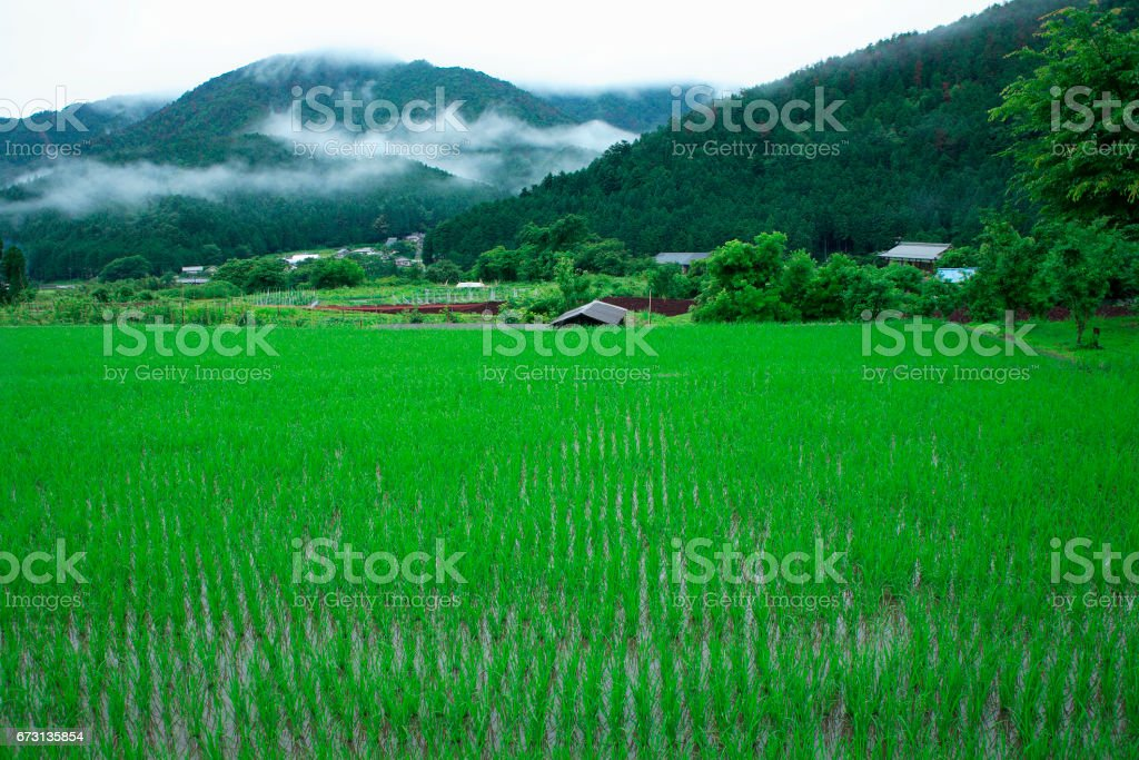 Countryside and mountains stock photo