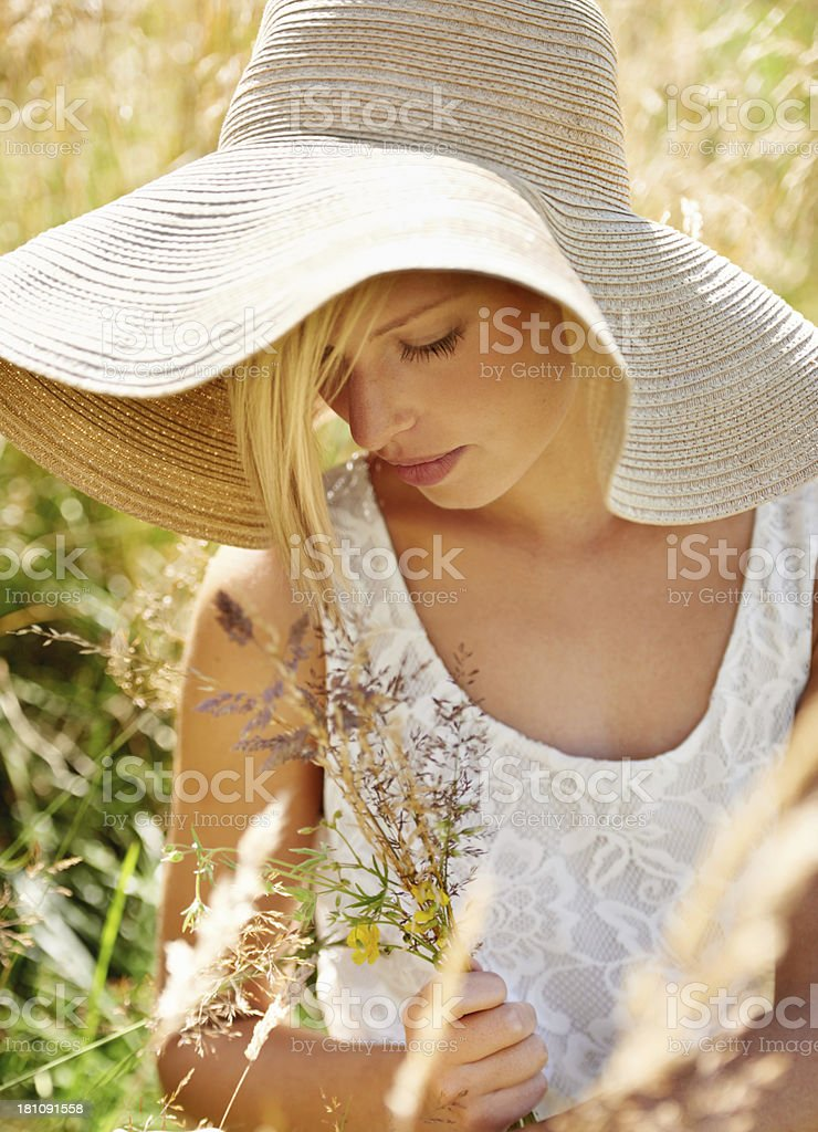 Countryside chic royalty-free stock photo