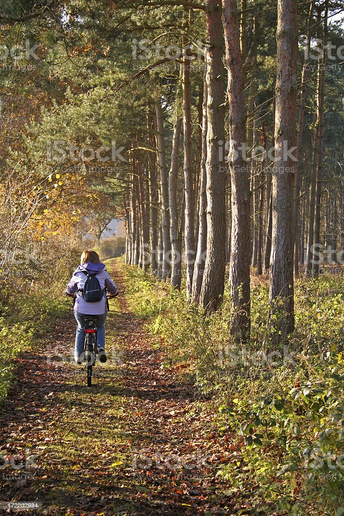 Countryside Cycle royalty-free stock photo