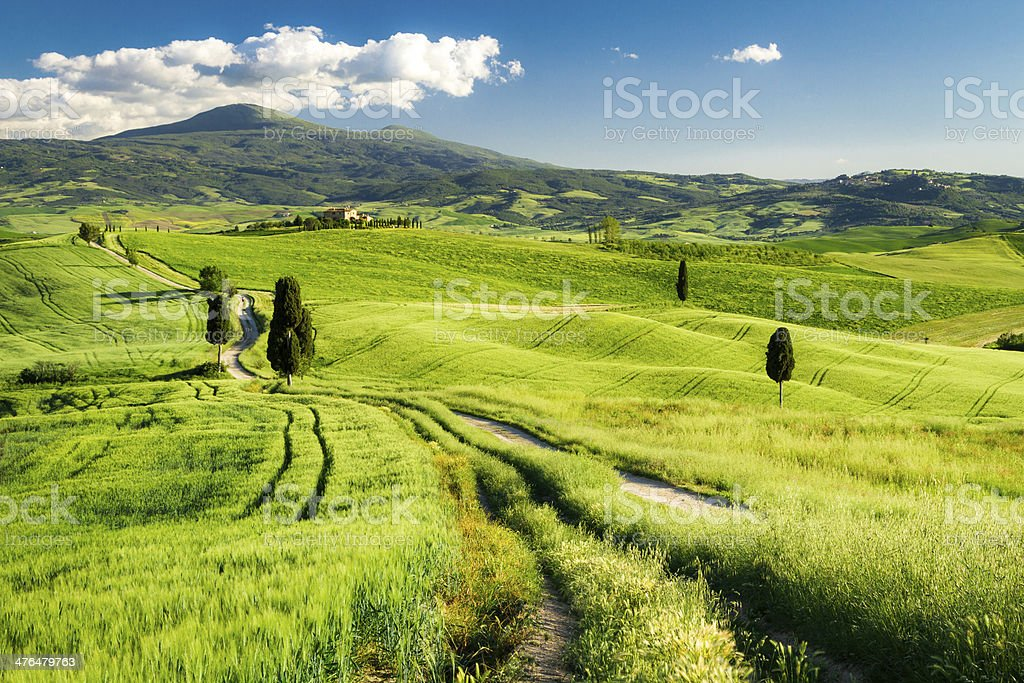 Countryside footpath in Tuscany royalty-free stock photo