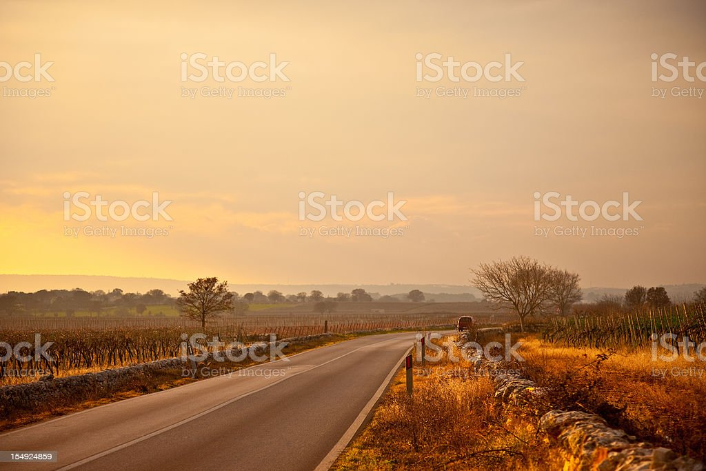 Countryside Highway In A Foggy Sunset royalty-free stock photo