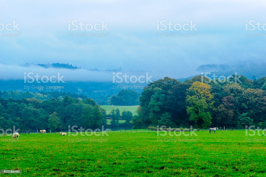 Countryside in the Morvan Mountains stock photo