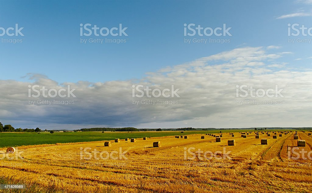 Countryside landscape. royalty-free stock photo