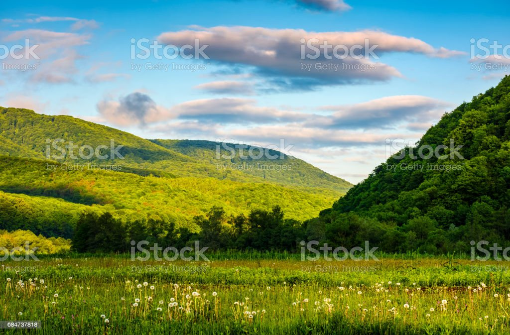countryside landscape with field, forest and mountain ridge stock photo