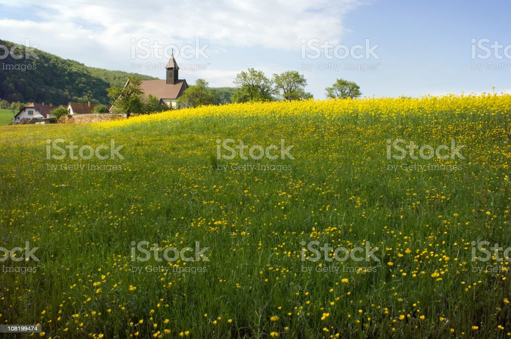 Countryside Meadow with Village in Background stock photo