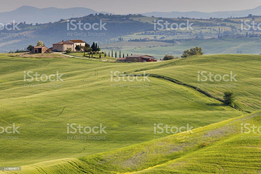 Countryside near Pienza, Tuscany, Italy royalty-free stock photo