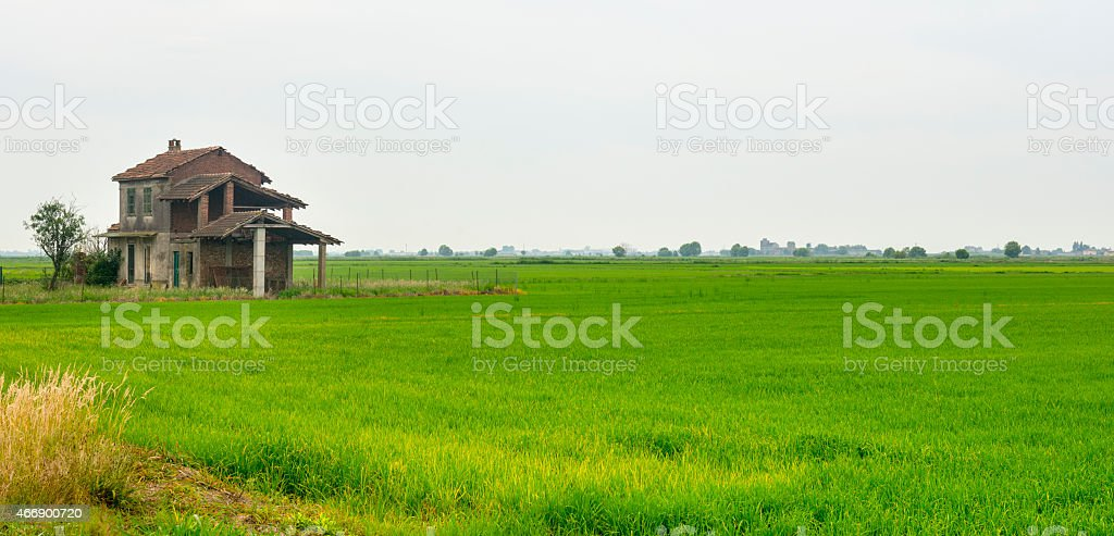 Countryside near Vercelli stock photo